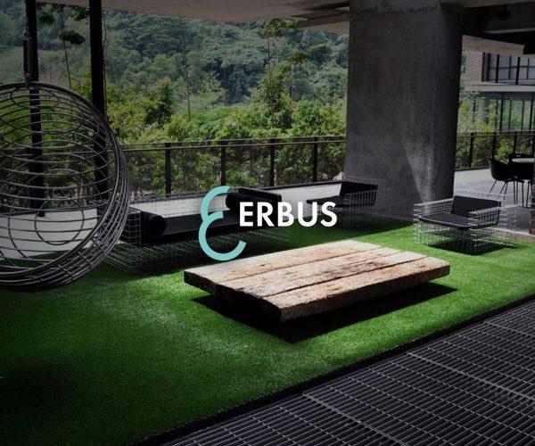 Erbus